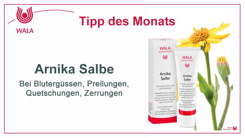 Homöopathie Tipp: WALA Arnika Salbe