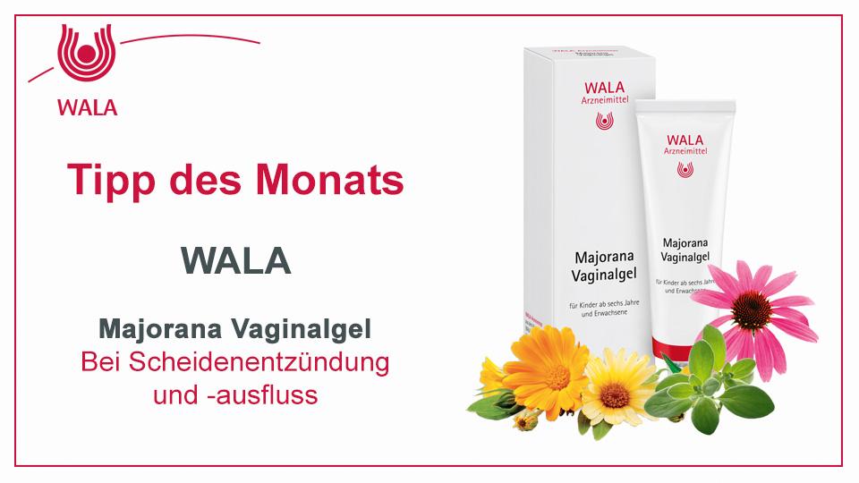 Homöopathie Tipp: WALA Majorana