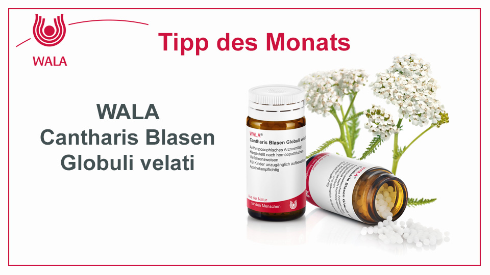 Homöopathie Tipp:  WALA Cantharis Blasen Globuli velati