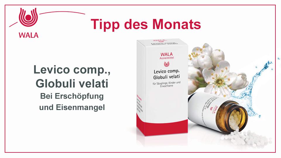 Homöopathie Tipp: WALA Levico comp., Globuli velati